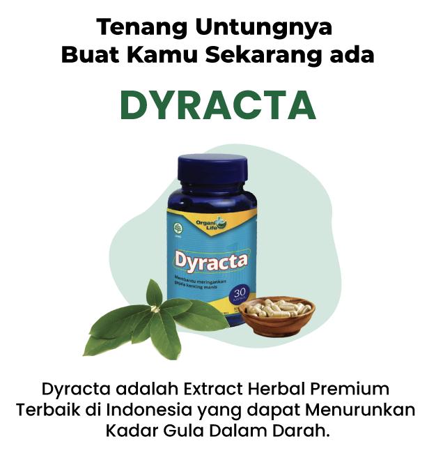 Dyracta No.1 Menjaga Kesehatan Pankreas Secara Alami